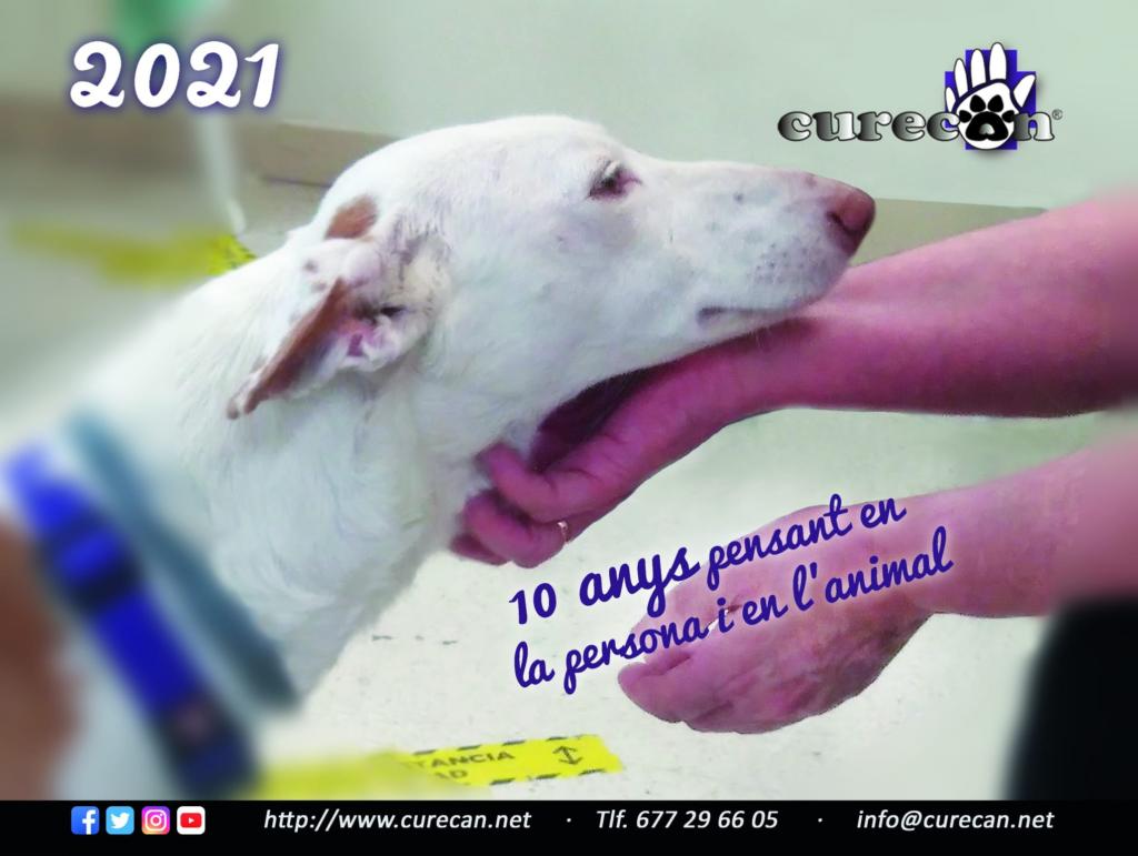 #curecan10