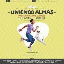 Uniendo Almas (@uniendo_almas) | Twitter
